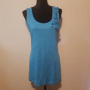 NWT Embellished Blue Dress